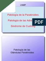 Patologia Adrenales Paratiroides Cushing_01