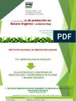 5.3 Juan Carlos Rojas Llanque INIA - Mancha Roja y Su Impacto en La Produccion de Banano