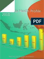 Indonesia Health Profile 2010