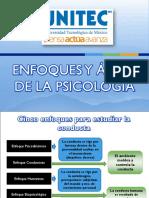 Enfoques y Áreas de La Psicología