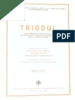 Triod Buc 1986 c5