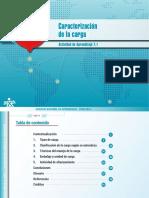 ADA_7.1 Caracterización de La Carga