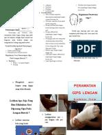 Leaflet GIPS.docx
