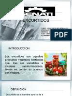 ENCURTIDOS DE VERDURAS.pptx