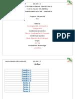 Perez Bryan MC102 Proyecto-2do-Parcial Tics
