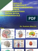 1. Nociones de Anatomía Del Encefalo y Malformaciones Congenitas 2014