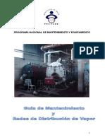 GUIAS DE MANTTO Y REDES DE DISTRIBUCION DE VAPOR.pdf