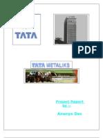 Sip Report Ananya Das