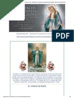 El Camino de Maria . Virgen de La Medalla Milagrosa . 27 Nov 2016