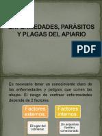 Enfermedades, Parásitos y Plagas Del Apiario