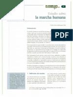 Estudio-sobre-la-marcha-humana-1.pdf