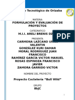 Proyecto Bull Wild Final