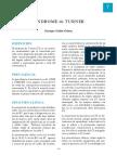 7-turner.pdf
