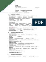 Ficha Psicopedagogica- PA3