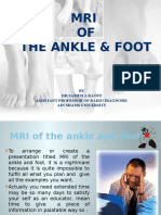 MRI of the Ankle and Foot(O Course)