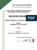 Bienes Publicos y Recursos Comunes.