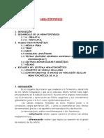 Hema 02. La Hematopoyesis