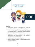 Producto. Estrategias Pedagógicas. Catalina Ramírez