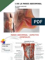 Patologia Pared Abdominal 2016