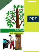 Proyecto Biocombustibles Terminado
