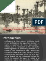 Dra Lorella Castorena Anlisis Social y Demogrfico de Los Oasis