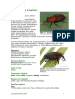 Red Palm Weevil Fact Sheet