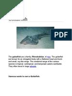 Guitarfish.docx