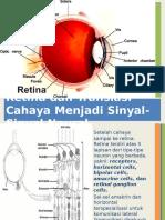 Retina Dan Translasi Sinyal-sinyal Neural