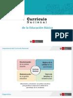 ORIENTACIONES DEL CNB.pdf