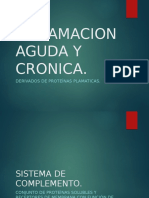 Inflamacion Aguda y Cronica