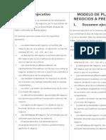 Estructura y Modelo de Un Plan de Negocios DECIMO
