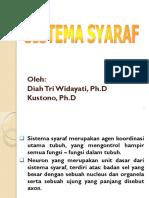 Bab 10 Sistem Syaraf