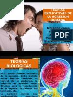 Presentacion Expo Sabado Psi Crim