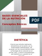Bases Esenciales Nutricion