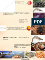 Antioxidante de açaí