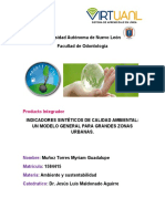INDICADORES-SINTÉTICOS-DE-CALIDAD-AMBIENTAL-pia-ambiente.docx
