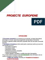 Curs 12 Proiecte Europene.ppt