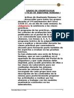 Uax-normas Practicas Anatomia Humana i 2016-17 (1)