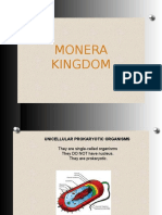 Monera, Protoctista and Fungi Kingdom