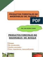 Clase 10. PFNM Hongos, Construcción y Aceite Esencial