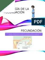 Fisiología de Fecundacion