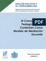 CONOCIMIENTO PEDAGÓGICO DEL CONTENIDO.pdf