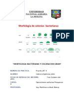 4to Informe Microbiologia.pdf