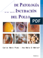 Enciclopedia Incubacion Aves 2