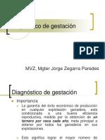 02 Diagnóstico de Gestación