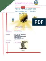 monografia de obligacion.docx