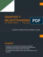 Sinapsis y Neurotransmisores