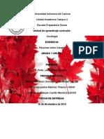 Ensayo de Canadá