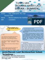 Ppt-Nanda Sabbaha N.k-laut Terbuka Bunaken