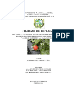 Incorporacion de Abonos Verdes y Biofertilizantes en Fresa